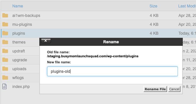 Wordpress rename plugins folder